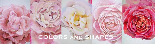 rosegarden01.jpg